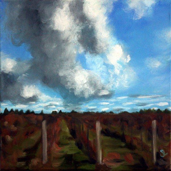 NiagaraSky#1-Vineyard