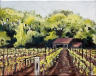 Shed in a Vineyard