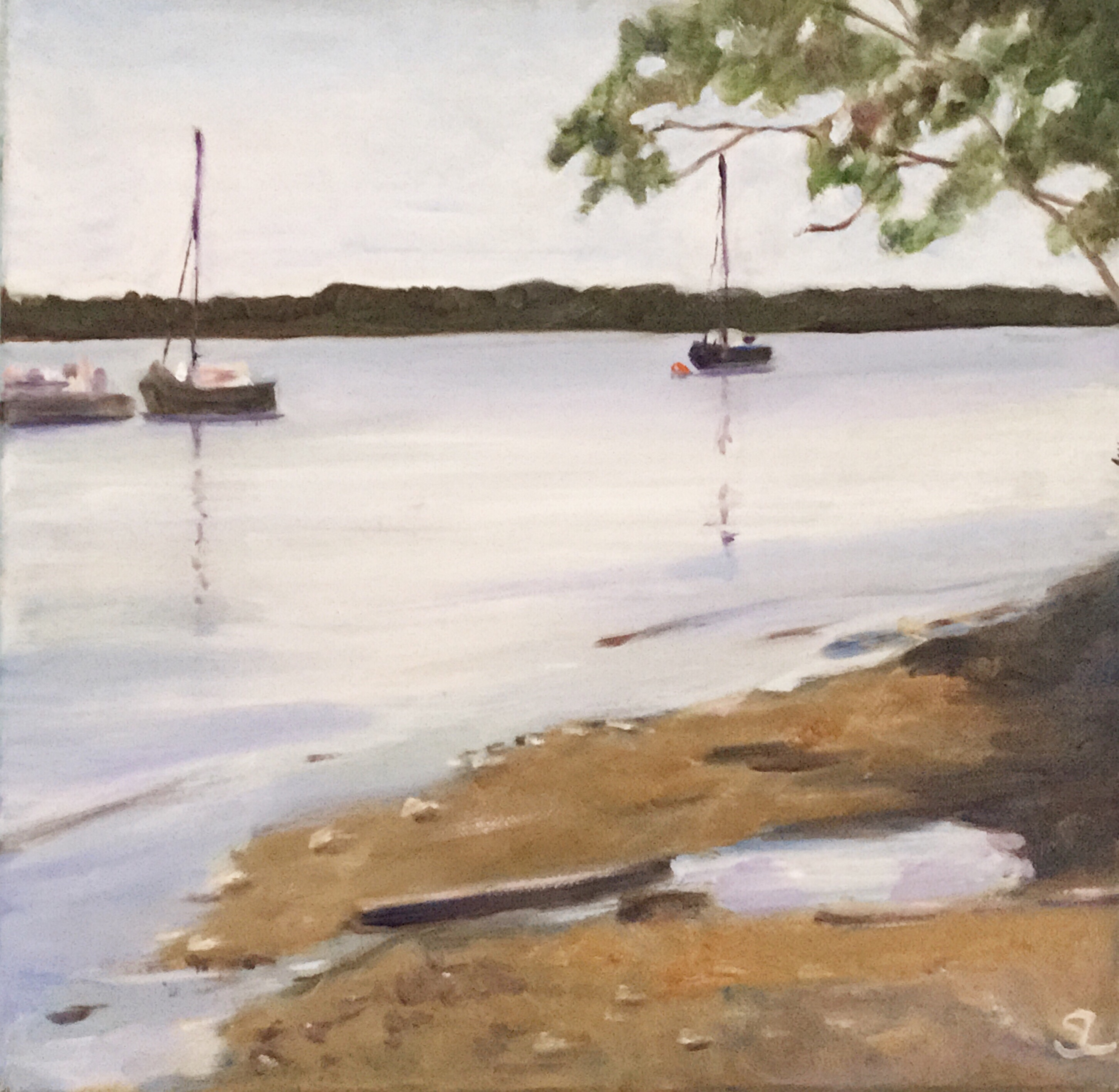 Smugglers' Cove (again)